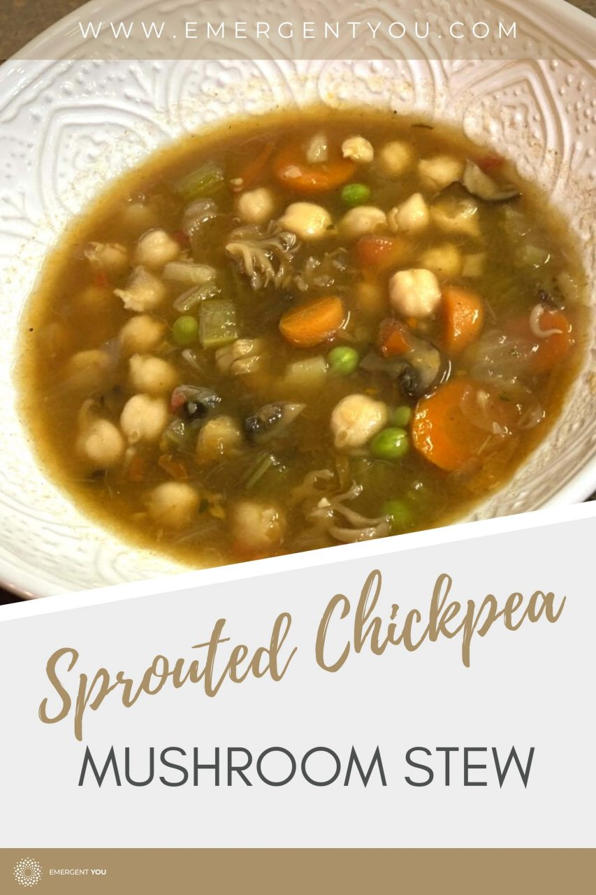 sprouted chickpea stew pin post