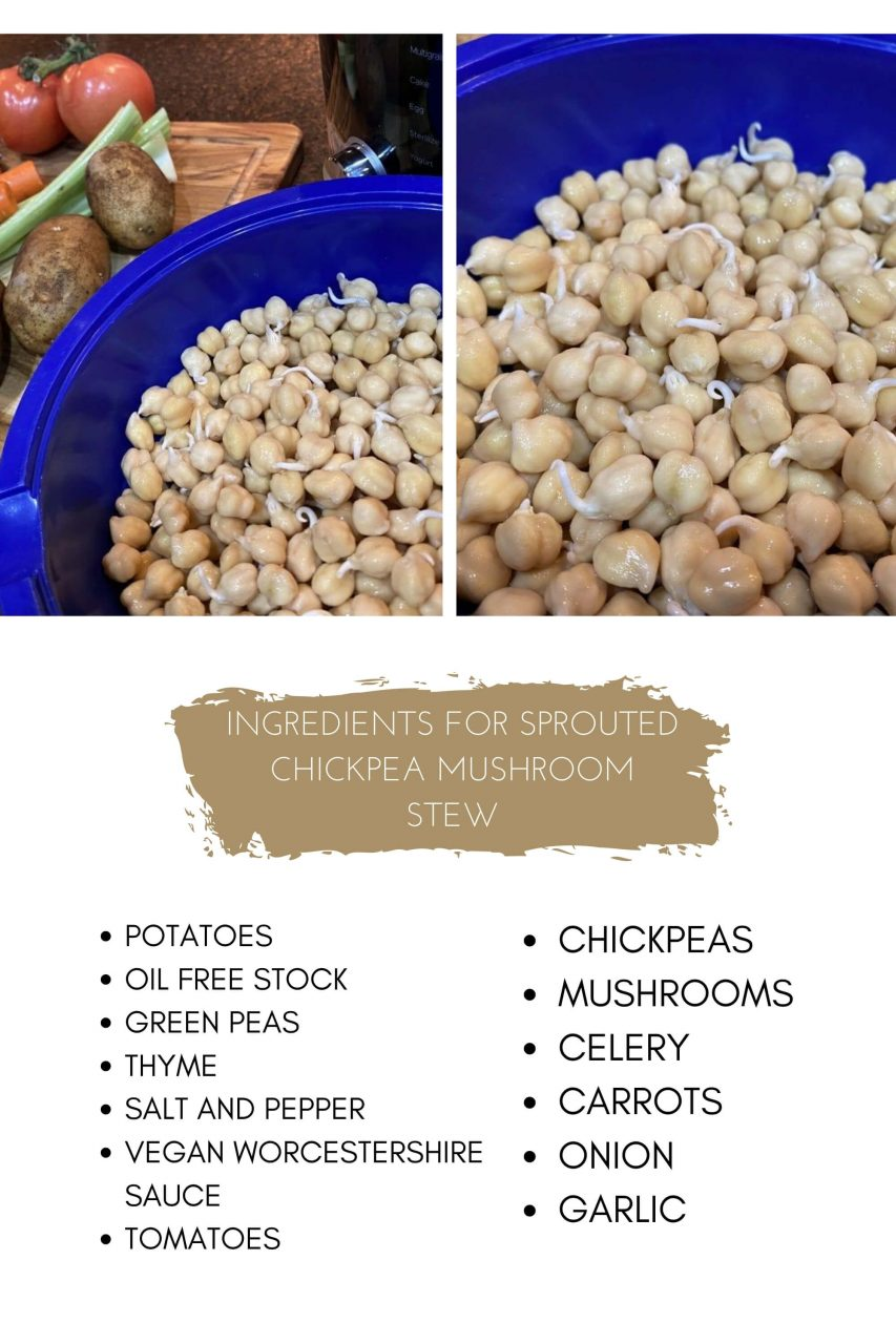 sprouted chickpea stew ingredients